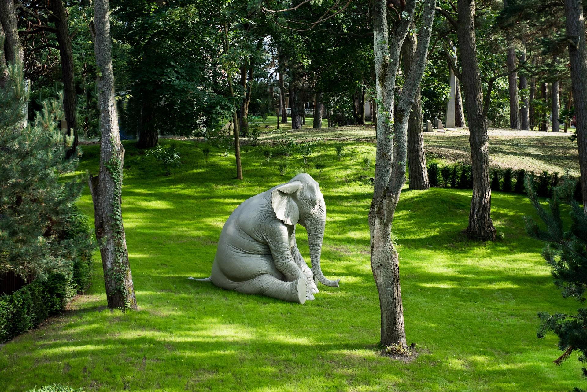 Naujas meno kūrinys EGLĖ apartamentų sode